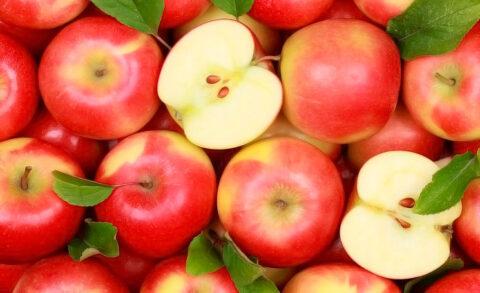 Химическое прореживание как метод нормирования урожая и повышения товарного качества плодов