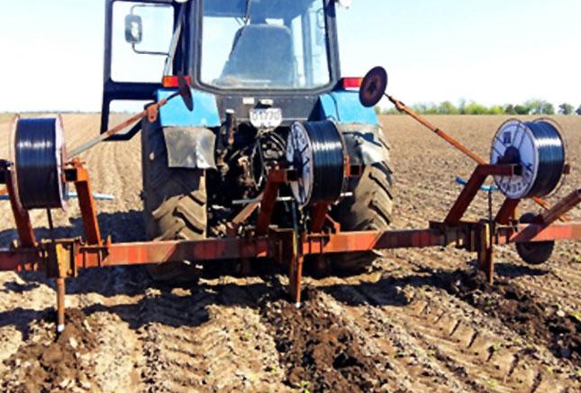 Выращивание кукурузы в России с применением различных систем полива